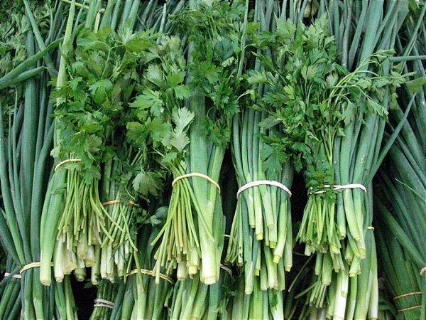 Cheiro Verde: 50 Sementes