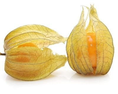 Physalis Fruta (Golden Berry): 20 Sementes