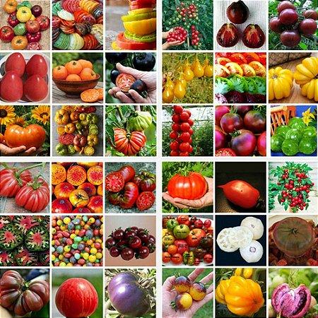 Tomates Sortidos - 100 Sementes
