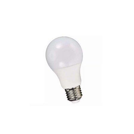 Lâmpada LED 7w Bulbo Plástico Econômico Branco Frio