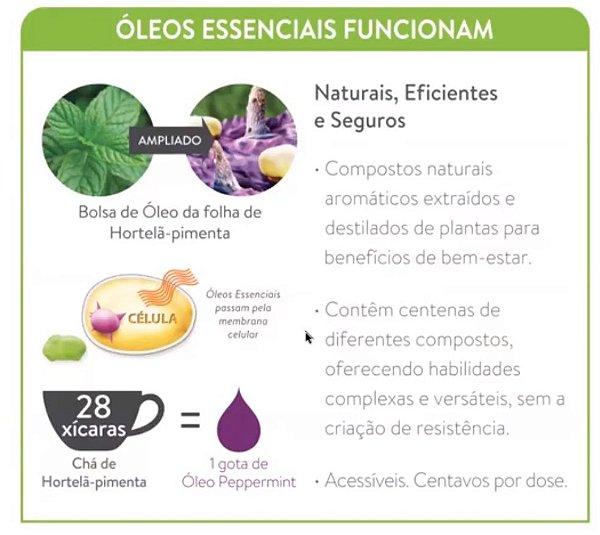 óleos essenciais - VEJA MAIS