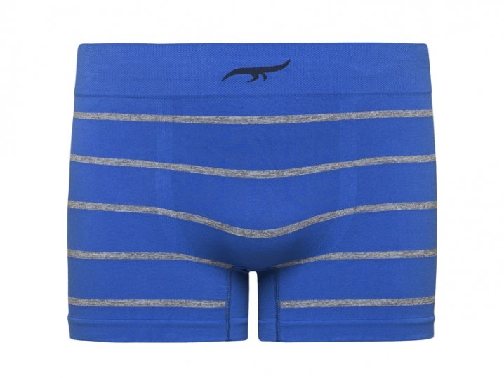 Cueca Boxer Listrada Sem Costura Azul