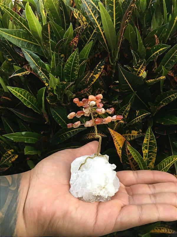 Árvore Mágica Da Felicidade Ágata Coralina