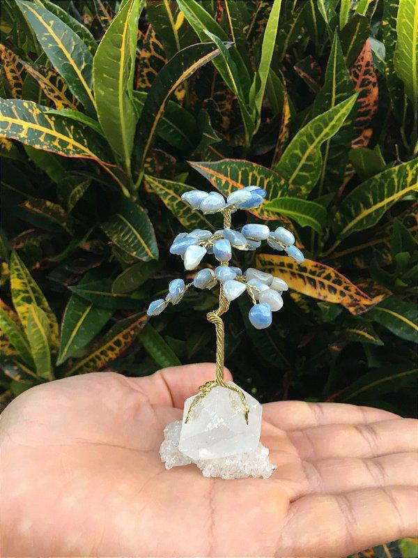 Árvore Mágica Da Felicidade Quartzo Azul