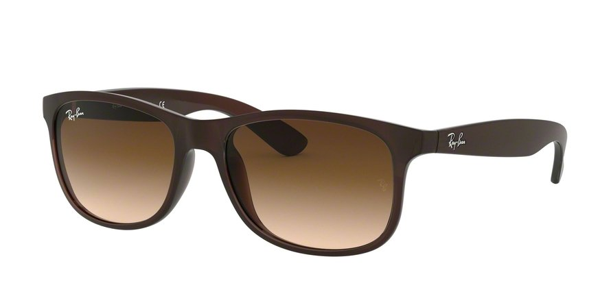 Ray-Ban Andy 0RB4202 Castanho