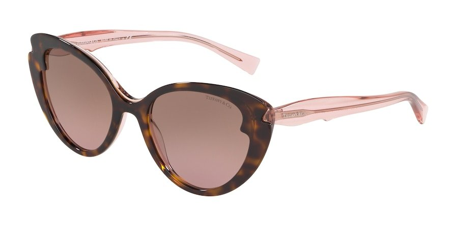 Tiffany TF4163 Havana/Pink Trasparent Lentes Violet Gradient Brown