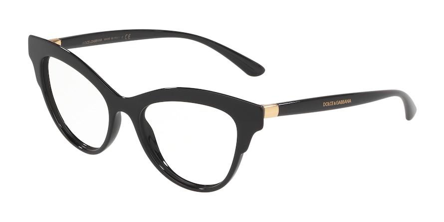 Dolce & Gabbana DG3313 Black