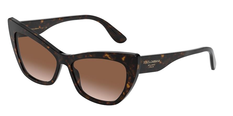 Dolce & Gabbana DG4370 Havana Lentes Brown Gradient