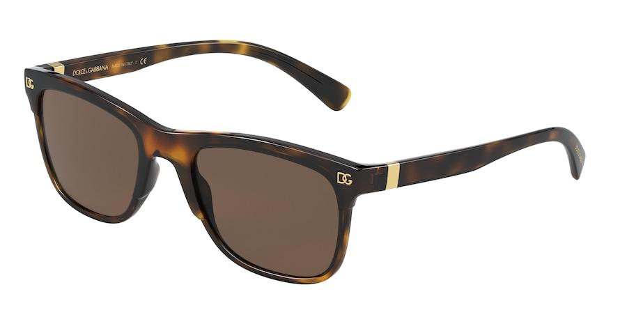 Dolce & Gabbana DG6139 Havana Lentes Brown