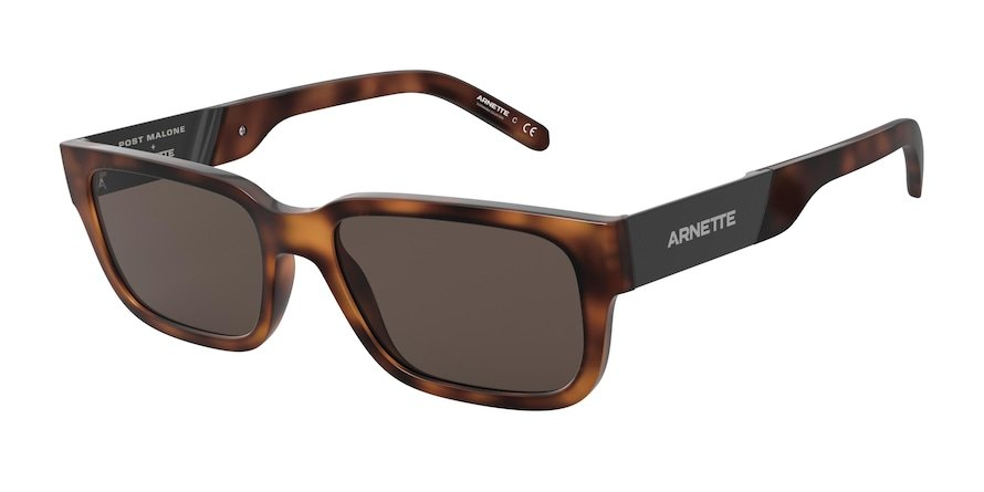 Arnette Post Malone+Arnette AN4273 Havana Lentes Brown