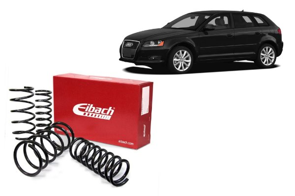 Mola Eibach Audi A-3 Sport 2.0 T 03/11 / Sportback 2.0 07/12 (43)