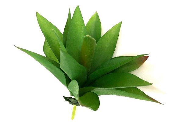 Babosa verde