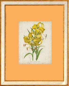 Conjunto 4 Quadros Flores Amarelas
