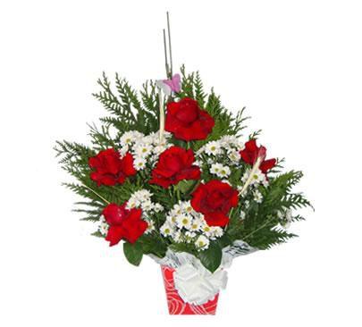 Arranjo com 6 Rosas Vermelhas Colombianas