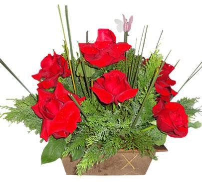 Arranjo com 12 Rosas Vermelhas Colombianas