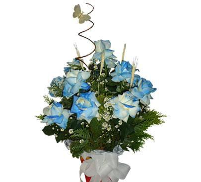 Arranjo com 12 Rosas Brancas Tingidas de Azul