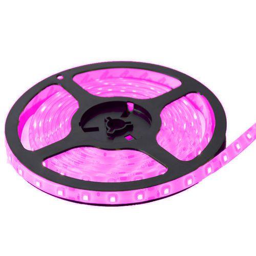 Fita LED 5050 Rosa sem Silicone IP20  5M 12V