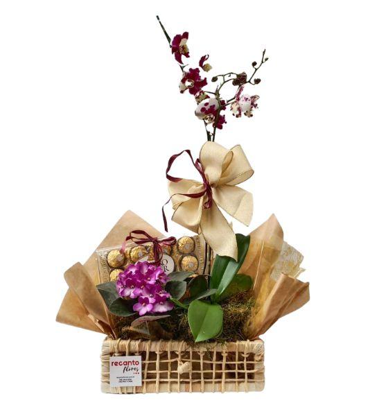 Orquídea Murmúrios