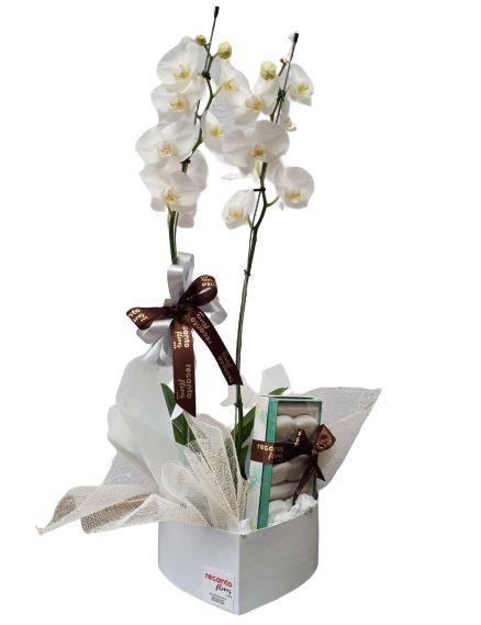 Orquídea com Sabonetes