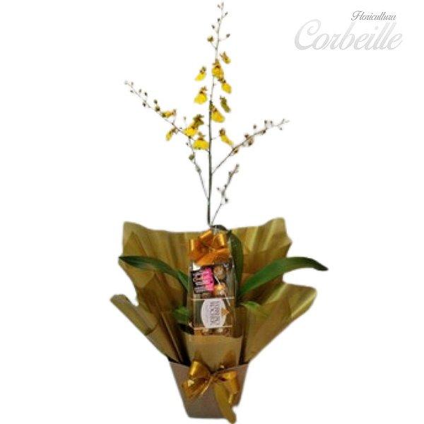 Orquídea Chuva de Ouro com Caixa de Bombons Ferrero Rocher 8 unidades