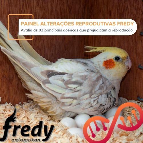 Painel Alterações Reprodutivas Fredy Calopsitas