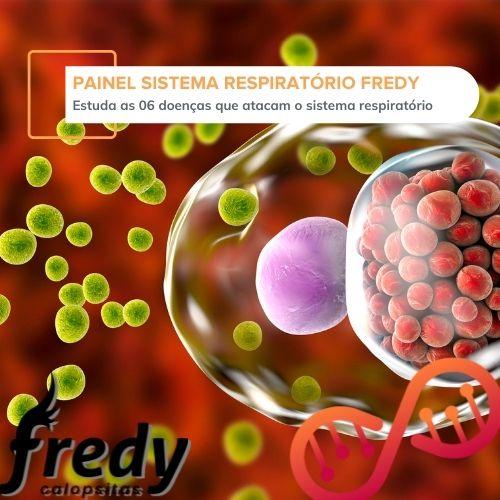 Painel Sistema Respiratório Fredy Calopsitas