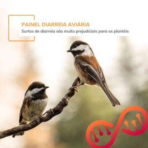 Painel Diarreia Aviária