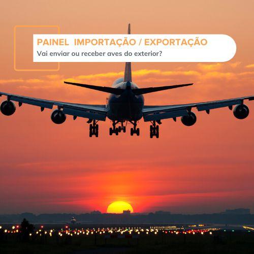 Painel Importação / Exportação