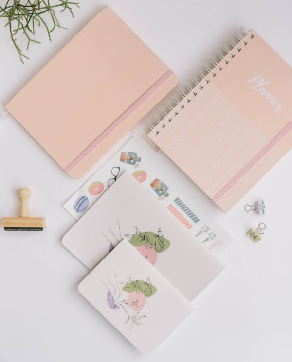 Kit Organizada