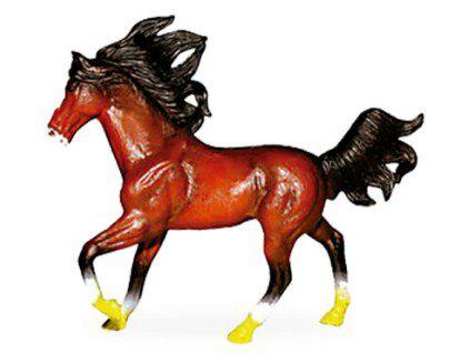 Coleção  Cavalos Selvagens