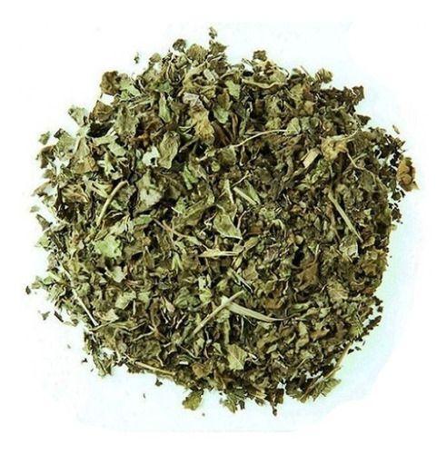 Verbena folhas - BELEZA DA TERRA