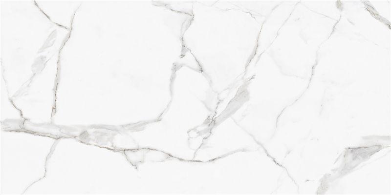 Porcelanato Calaacáta Ar 12002 62x122 cm