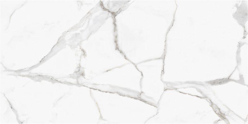 Porcelanato Calacáta Pr 12002 61x120 cm