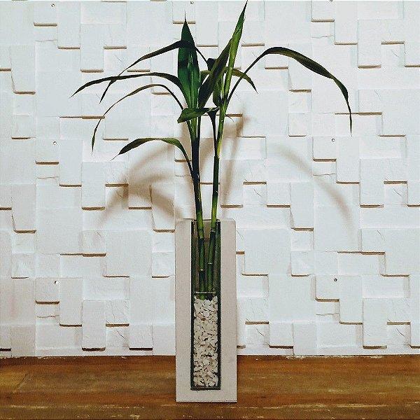 Bambu da sorte com vidro e cimento