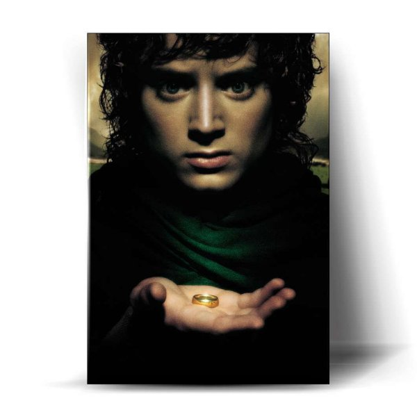 Senhor dos Anéis #14