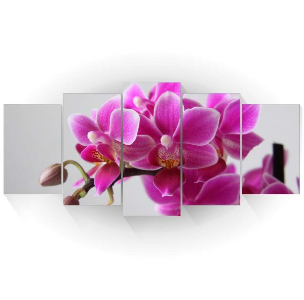 Mosaico Orquídeas