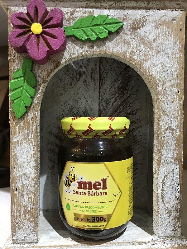 Mel Puro Santa Barbara Florada Silvestre 300 gr Pote de vidro