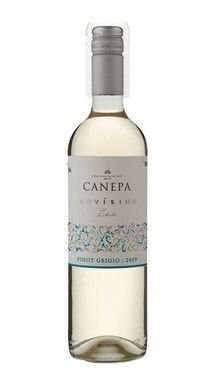 Canepa Novissimo Pinot Grigio 2016