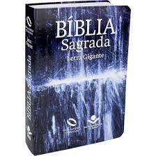 A Bíblia Sagrada Nova Almeida Atualizada Letra Gigante - Capa Água