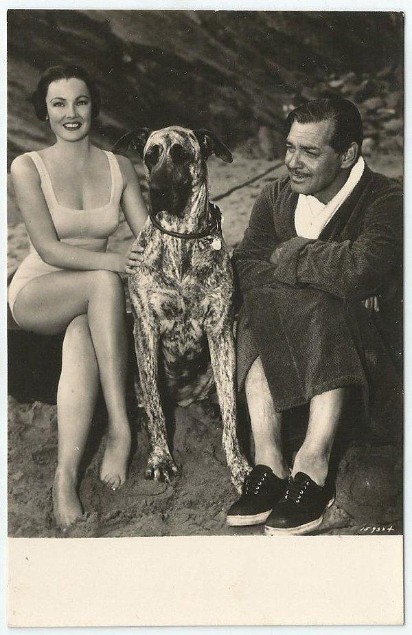 Cartão Postal Antigo Original, Fotografia do Ator Clark Gable , Hollywood