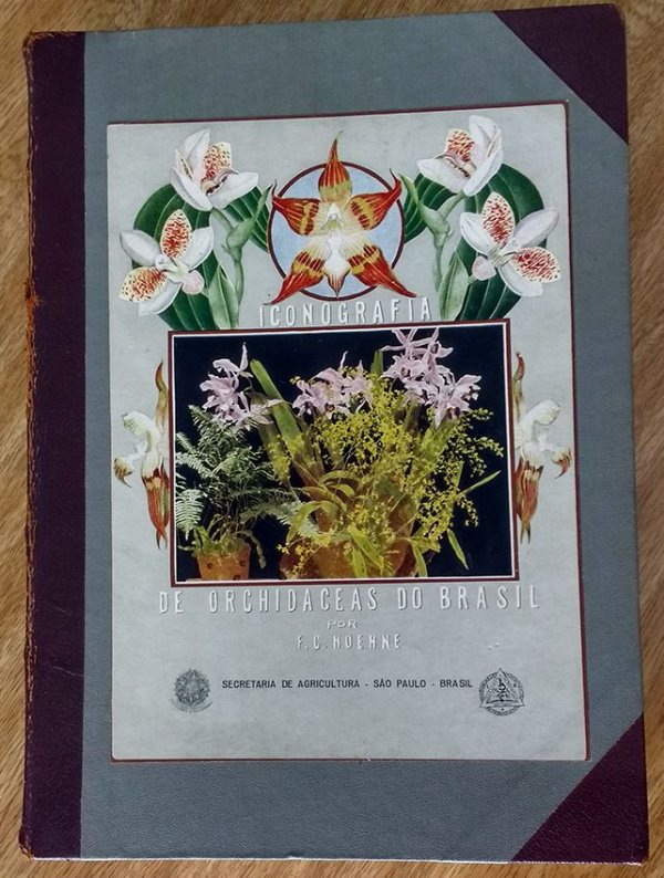 Iconografia de Orchidáceas do Brasil, 1949  - Raro - Orquídeas