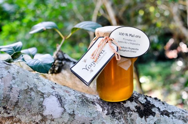 Mel Yaguara® - Florada do Jambolão e Ingazeira (430g)