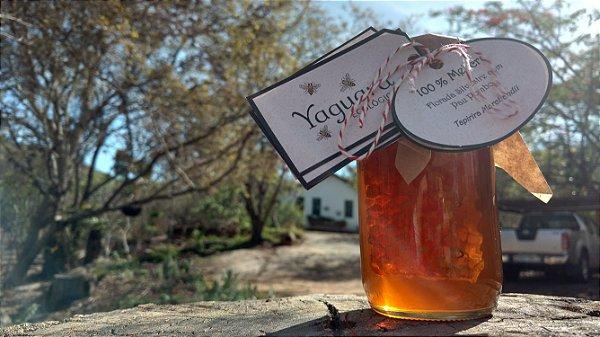 Mel Yaguara® - Florada Silvestre com Pau Pombo - Com Favo (430g)