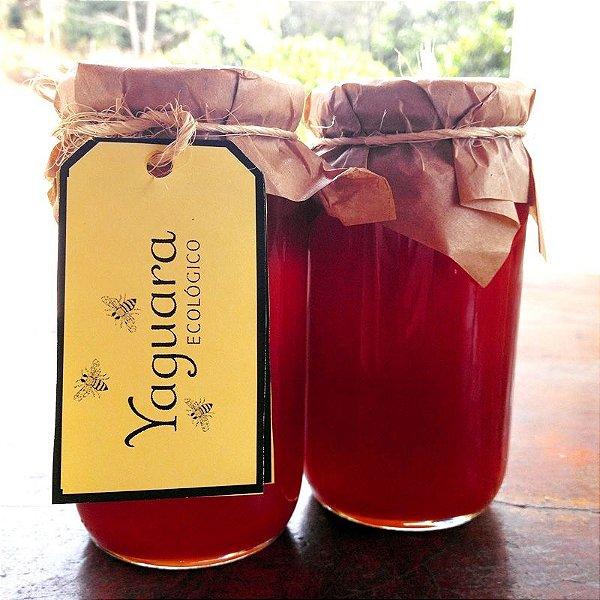 Mel Yaguara® - Florada de Cajú, Cajá, Café, e Sucupira (430g)