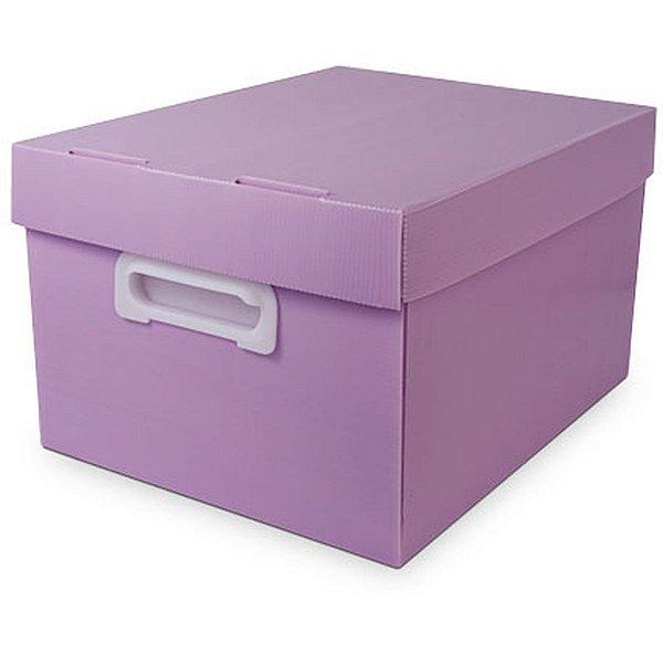 Caixa Organizadora The Best Box G 437x310x240 Llp Polibras