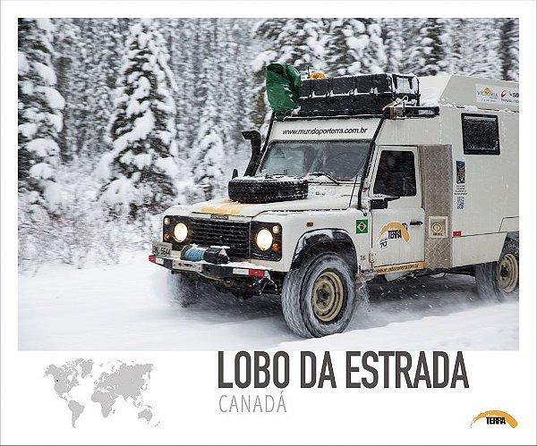 Pôster Lobo da Estrada - Canadá - 70cm x 60cm