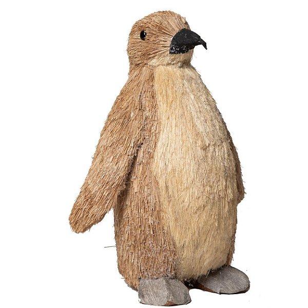 Pinguim Benie