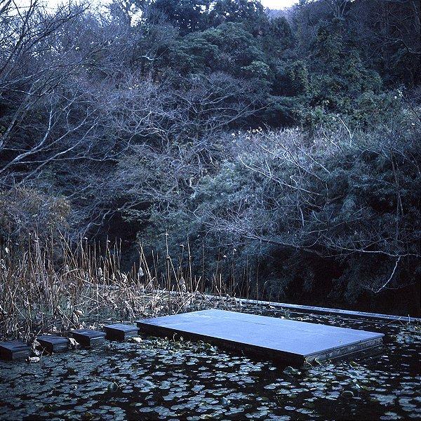 03 Fotografia . Jardim Lotus House . Gabriel Kogan