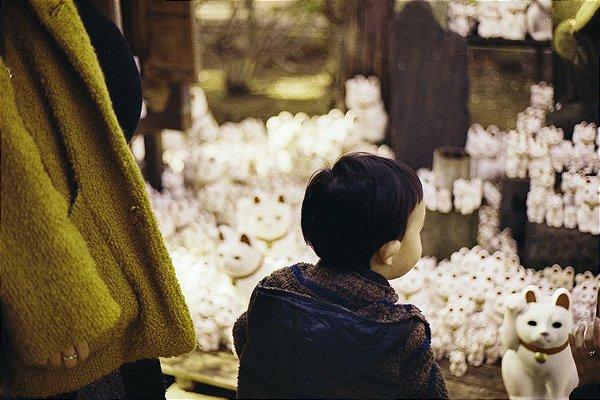 14 Fotografia . Gōtokuji . Clara Figueiredo