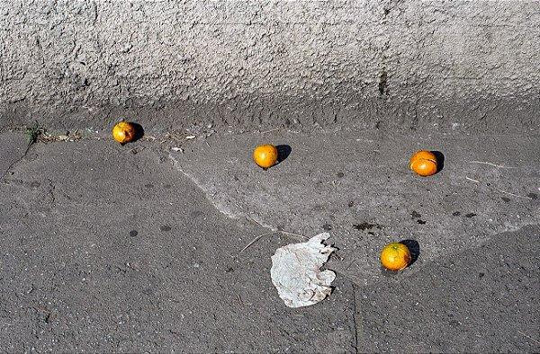 28 Fotografia . Laranjas . Pedro Bonacina